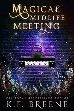 Magical Midlife Meeting (Leveling Up 5) by K.F. Breene